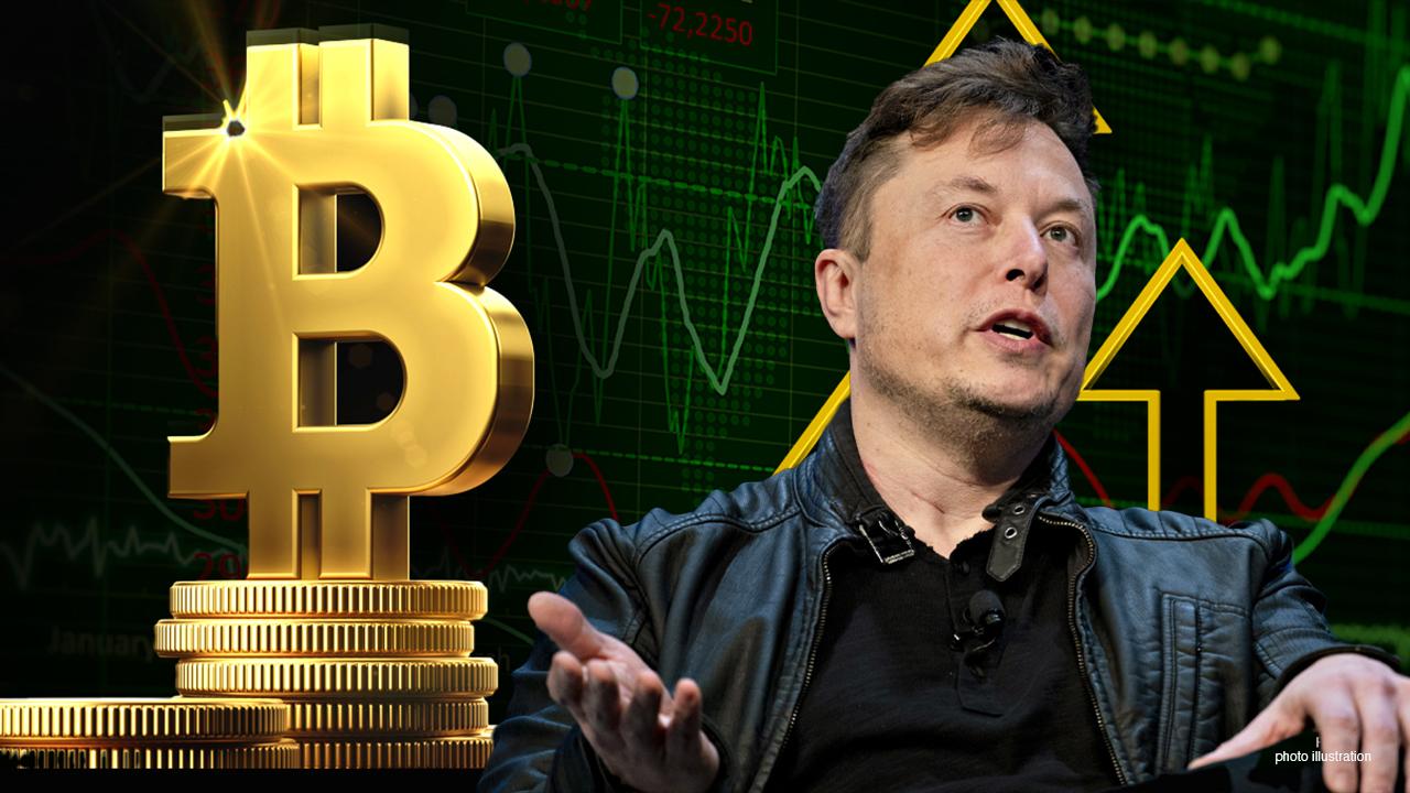 Dukungan Musk Terhadap Kripto